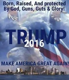 Let's Make America Great Again... by putting the clear choice in the White House. ~@guntotingkafir Vote Trump 2016!