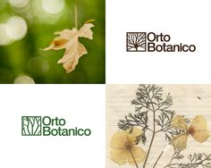 My graduating project from Instituto Europeo di Design's (IED) Master of Visual Communication I completed a design application to Giardino Orto Botanico di Roma, part of the Università di Sapienza's biology department. The scope of the project was to shep…