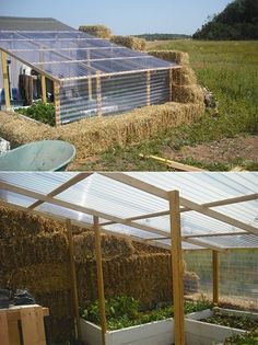 Building a straw bale greenhouse is just like any other construction project. It could either be a disaster or it could be the best greenhouse you will ever have. It all depends on how you build it! Diy Greenhouse Plans, Greenhouse Supplies, Lean To Greenhouse, Greenhouse Gardening, Underground Greenhouse, Underground Homes, Growing Ginger Indoors, What Is A Conservatory, Plant Diseases