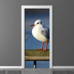 Fototapeta na drzwi Wally Photograph, Doors, Bird, Interior Design, Decoration, Wallpaper, Animals, Inspiration, Home Decor