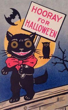 bat, cats, and Halloween image