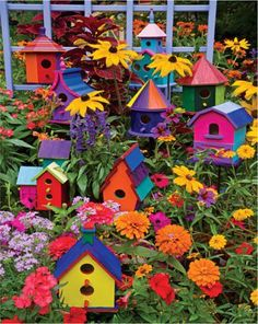 Beautiful flowers with wonderful colourful bird houses.
