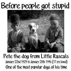 Pete was born on my bday, I loved this show and that dog so much, what a great dog and great kids..............<3!!!