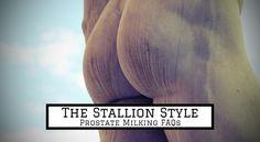 Prostate Milking FAQs