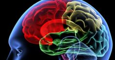 People in the early stages of dementia may not be able to tell the truth from lies and sarcasm from sincerity, a new study finds. The findings could help doctors diagnose dementia, such as Alzheimer's, earlier, study researchers said. Tumor Cerebral, Brain Tumor, Brain Injury, Brain Fog, Bipolar Disorder, Brain Health, Mental Health, Brain Nutrition, Harvard University