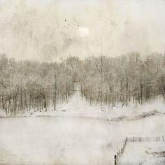 A Winter's Invitation | Flickr - Photo Sharing!