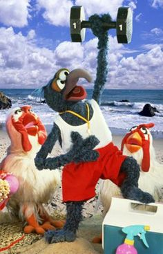 Even Gonzo knows it's beach time!