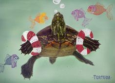 Do you like it?? turtle tortuga, illustration, fish