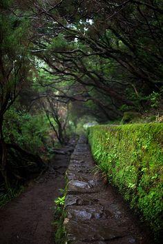 Levada Paúl Da Serra | Madeira