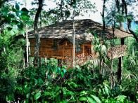 It might be hard to find a more exotic location than the treehouse accommodations offered at  Tranquil Resort , nestled within the remote rainforest of Wayanad, in the northern part of Kerala, India.