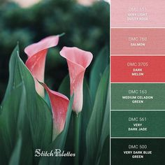 Daily color palette inspiration for embroidery lovers and pattern designers. Embroidery thread matching ideas for cross stitch and needlework projects Green Color Pallete, Green Color Schemes, Green Palette, Color Combos, Green Colors, Christmas Palette, Christmas Colors, Salmon Pink Color, Hand Embroidery Projects