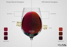 Color, Rim variation and Opacity of young Cabernet Sauvignon vs Old Cabernet Sauvignon. Feb-2012 created by Winefolly.com - Difference de couleurs et Opacité entre un jeune et un vieux Cabernet Sauvignon.