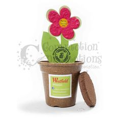 Earth Day Seed Paper Flower Kit