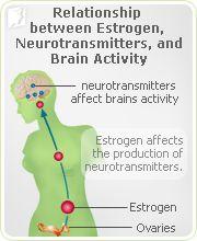 Relationship between Estrogen, Neurotransmitters, and Brain activity