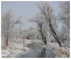 Frozen Stream | Frozen stream running through a wooded meadow | Watercolor art and a ...