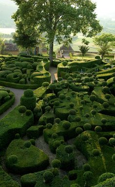 The Amazing Gardens of Marqueyssac in France. Imagine how many landscape gardeners take care of this place!