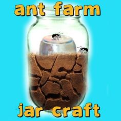 How to Make an Ant Farm Jar and Watch an Ant Colony Build Mazes « Box And Container Crafts « Kids Crafts & Activities