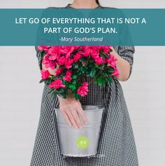 Let it Go!  By: Mary Southerland As we drove through the scenic mountains of North Carolina, I could feel my soul begin to settle and my spirit grow quiet. It was a welcome feeling ... one that was a long…