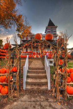 I do believe this is Kenova, WV's Pumpkin House!!