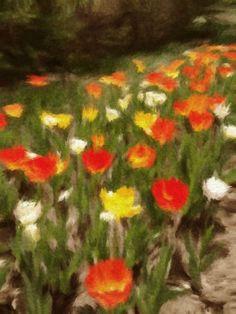 14 Best Long Island Gardens Images Long Island Garden Island
