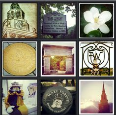 Photos from around campus. Wake Forest University, The Pa, Gallery Wall, Vibrant, Spaces, History, Photos, Art, Art Background