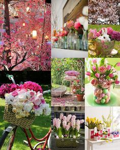 awesome pink and ligh pink spring mood board with blooming flowers Collages, Make A Photo Collage, Spring Photos, Christmas Mood, Spring Blooms, Spring Garden, Spring Summer, Colour Board, Inspiration Wall