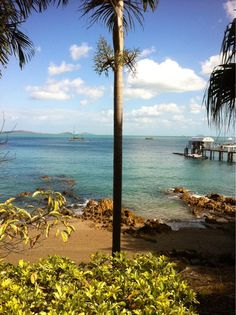 Airlie Beach Whitsundays #Queensland #Australia    Twitter / Recent images by @YHA_Australia