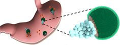 Micromotors Powered by Stomach Acids Lower pH, Safely Release Antibiotics | Medgadget