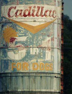 Cadillac by Ralph Waltman