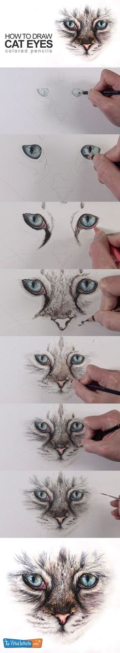 Lovely Learn to draw cat eyes with coloured pencils on this lesson. - Stunning Learn to draw cat eyes with c. Pencil Drawing Tutorials, Pencil Art Drawings, Art Drawings Sketches, Animal Drawings, Cool Drawings, Drawing Art, Pencil Sketching, Watercolor Tutorials, Realistic Drawings