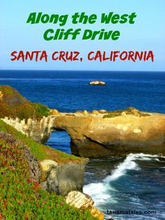 The West Cliff Drive in Santa Cruz, California connects the Natural Bridges State Beach to the Wharf / Boardwalk. The drive is especially stunning during sunset.
