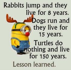 Dear Minion, I learned a lot from you :-D