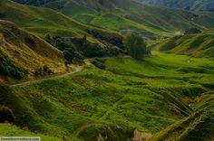 New Zealand: Forgotten World Highway Route