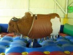 Adult Party Ideas: Cowboy Party