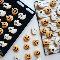 pumpkin and ghost cookies for a festive and delicious halloween treat Halloween Treats, Fall Halloween, Halloween Cookies, Halloween Biscuits, Happy Halloween, Halloween Party, Spooky Treats, Halloween Inspo, Halloween Desserts