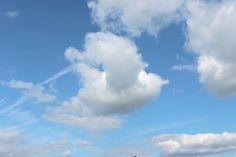 Ein wunderbarer Wolkenvogel von Marja (Spielpause)
