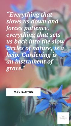 35 Inspiring Gardening Quotes to Encourage You to Grow Plants Gardening Quotes, Gardening Tips, Masanobu Fukuoka, Instagram Accounts To Follow, Love Garden, Warrior Princess, Growing Herbs, Great Words, Mindful Living