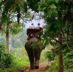 Thailand - ride a elephant!