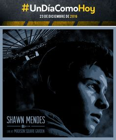 Shawn Mendes - Live at Madison Square Garden - 23 de diciembre de 2016 Shawn Mendes, Madison Square Garden, Movies, Movie Posters, December, Songs, Historia, Artists, Films