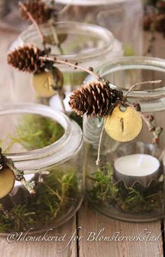 Green moss in jars with tea lights--sweet and simple.