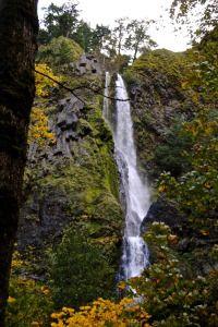 Starvation Creek Waterfall #Oregon #OregonHikes #StarvationCreekFalls