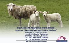 Our Immigration Advisors for New Zealand are offering expert migration advice – we are specialized in providing business migration solutions for overseas clients. New Zealand, News, Life