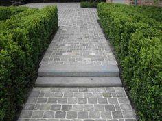 "Image Search Result For ""terrastegels landelijk"" - Hof Einfahrt Ideen Front Garden Path, Front Path, Garden Steps, Garden Paths, Front Garden Entrance, Front Walkway, Back Gardens, Small Gardens, Outdoor Gardens"
