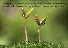 Hidden Things Revealed Mark 4:22