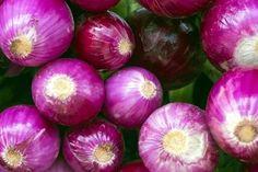 Gyakran ettem eddig lila hagymát, de nem tudtam, hogy EZT műveli a testemmel - Hiszed.Com Onion, Vegetables, Food, Vegetable Recipes, Eten, Veggie Food, Meals, Veggies, Onions