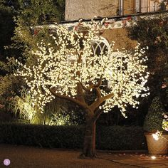 Illuminated Decorative LED Tree for an outdoor wedding|For more ideas visit wedding-venues.co.uk