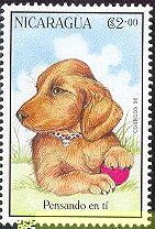 dachshund stamps | Wirehaired Dachshund Stamps
