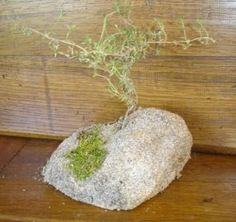 Préparer la crèche : un tuto ultra rapide pour faire un petit rocher. - Santons et crèches de Provence