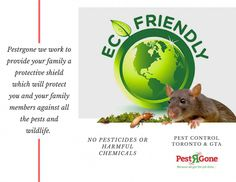 Organic Garden Guide To Controlling Pests For Your Vegetables Pest Control Pests Pest Control Services