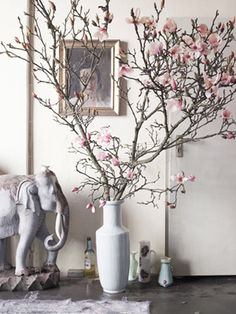 I wonder if it's a real Japanese magnolia? Or a really good fake?